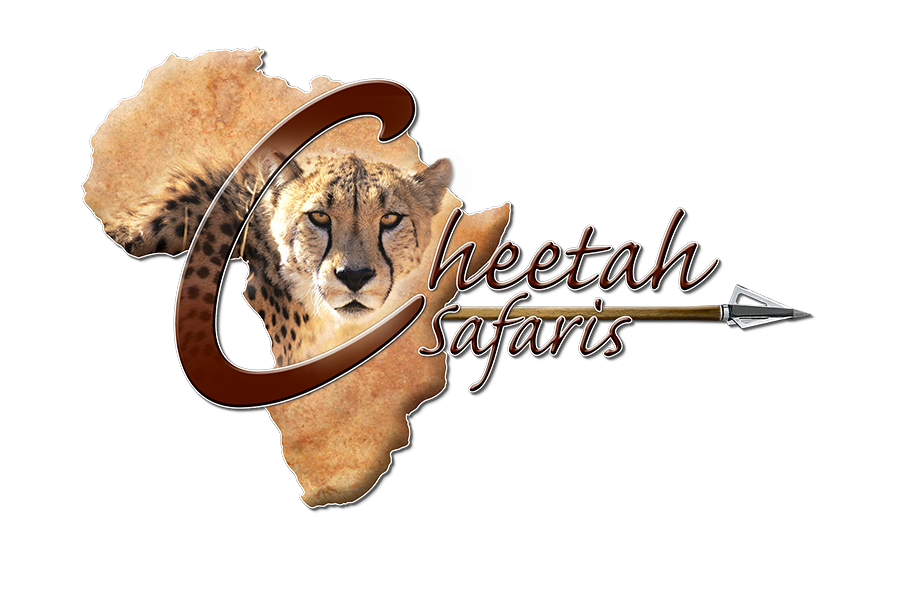 Cheetah Safaris